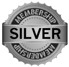 Silver reputation management subscription